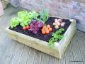 Traditional  Vegetable Box